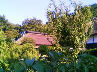 05-09-08_16-23.jpg