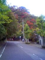 kamakura_5.jpg