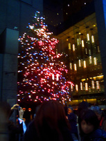 tree_ginza.jpg